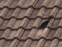 Expert roof repairs Wakefield and all surrounfing towns and villages